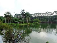 Гуанчжоу и его  великолепные парки.