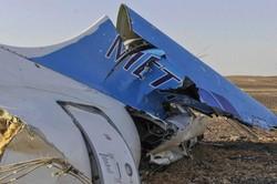 В Израиле подозревают взрыв жидкой бомбы на борту А321