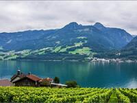 Дивный Квинтен. Швейцария