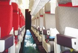 Новые опции в самолётах для смелых пассажиров