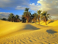 Тунис могут открыть уже в этом месяце