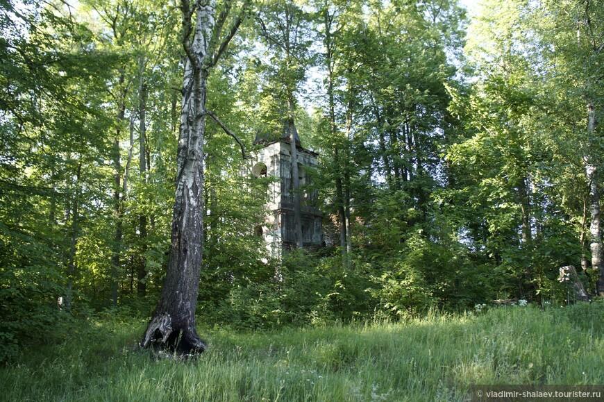 Гуляя по берегу озера наткнулись на старое брошенное кладбище, на территории которого стоит руинированная церковь.