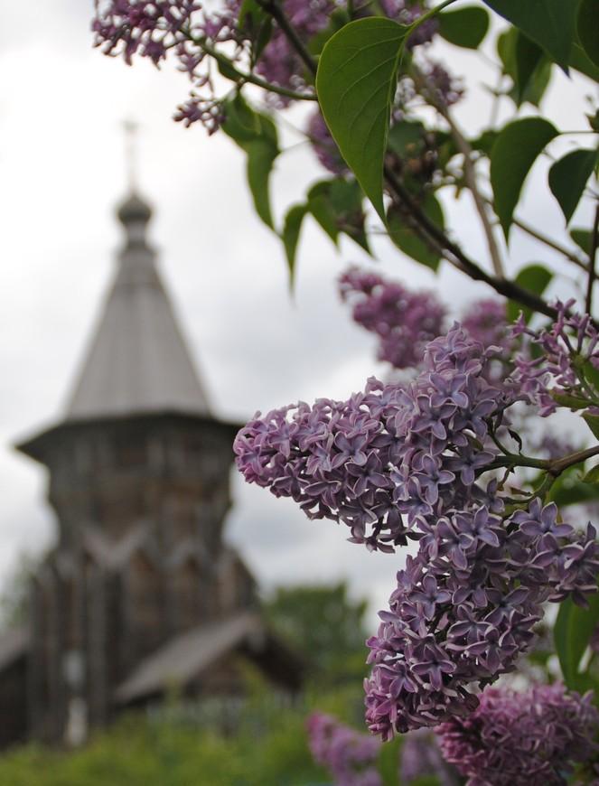 Церковь Петра и Павла. Местные жители говорят, что это одна из старейших церквей Карелии,год постройки:1620.
