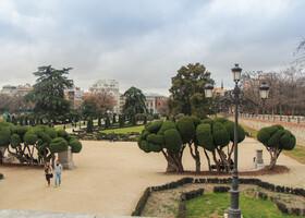 В парке много различных уголков, эта аллея с декоративно подстриженными деревьями выходит к музею Прада.