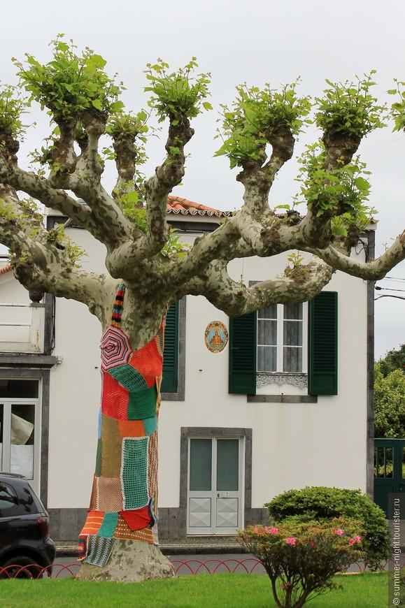 Дерево в платьице :)
