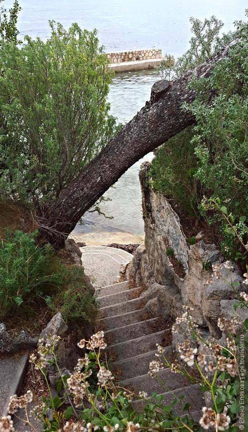 А это лестница, которая ведет на то, что мы приняли за частный детский пляж, калитка на лестницу была на замке.