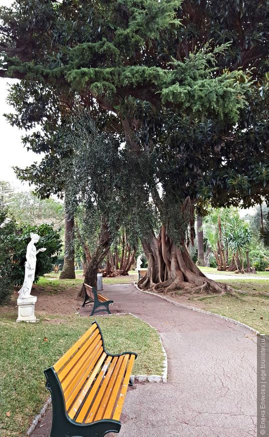 Общественный парк со скульптурами и древними деревьями