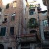 Лукка, Тоскана, дома башни на рыбной площади, экскурсии по Флоренции и Тоскане с частным индивидуальным гидом на русском языке