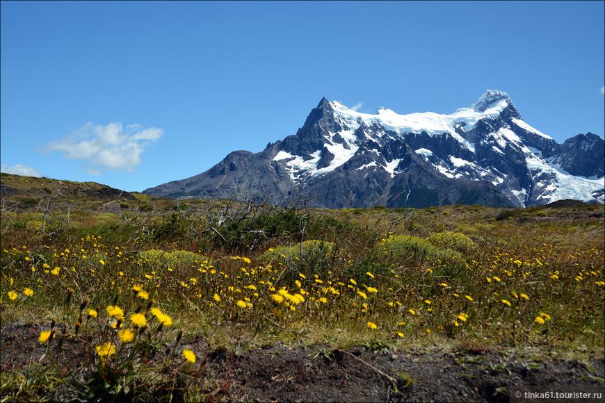 Вершины впечатляющей горной цепи Пайне увенчаны ледниками.
