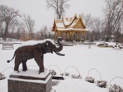 В горы Таиланда пришли аномальные холода