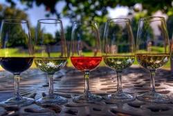В Новороссийске откроют центр винного туризма