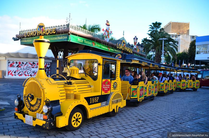 На сегодня у нас запланирована поездка в Лоро парк.Такой симпатичный паровозик отвезет всех желающих бесплатно в парк.