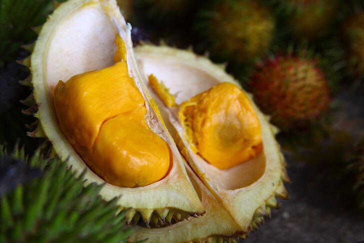 плоды дуриана фото