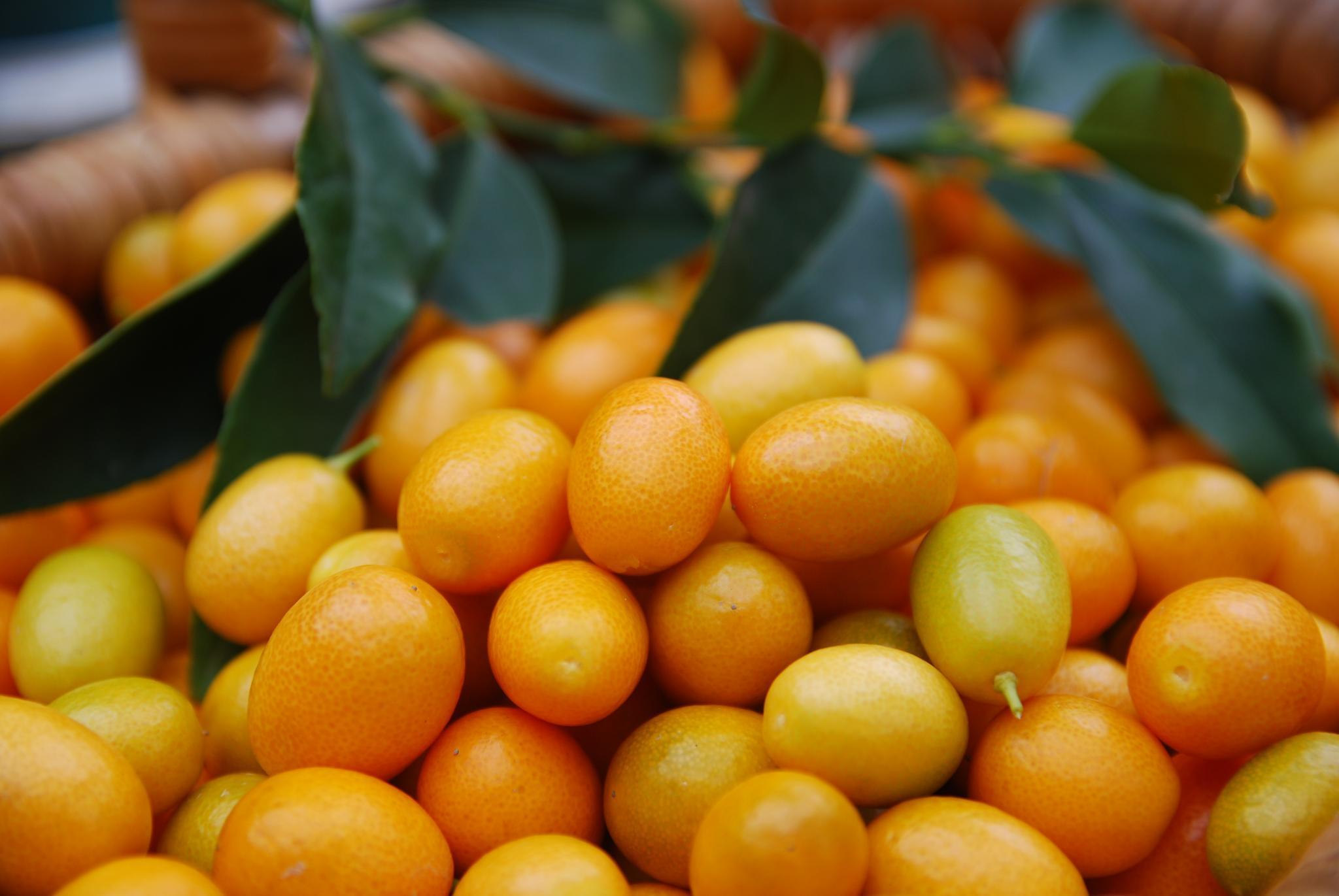 том, что желтый экзотический плод фото держат