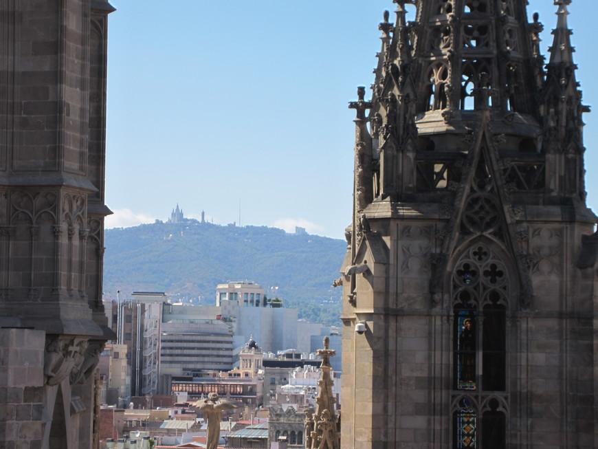 С крыши собора открываются интересные виды на город и порт.