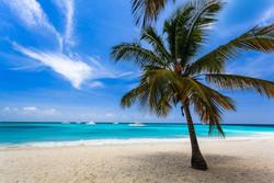Доминикана - самая популярная у туристов страна в Латинской Америке