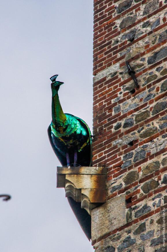 сам бронзовый павлинчик, на главной башне замка