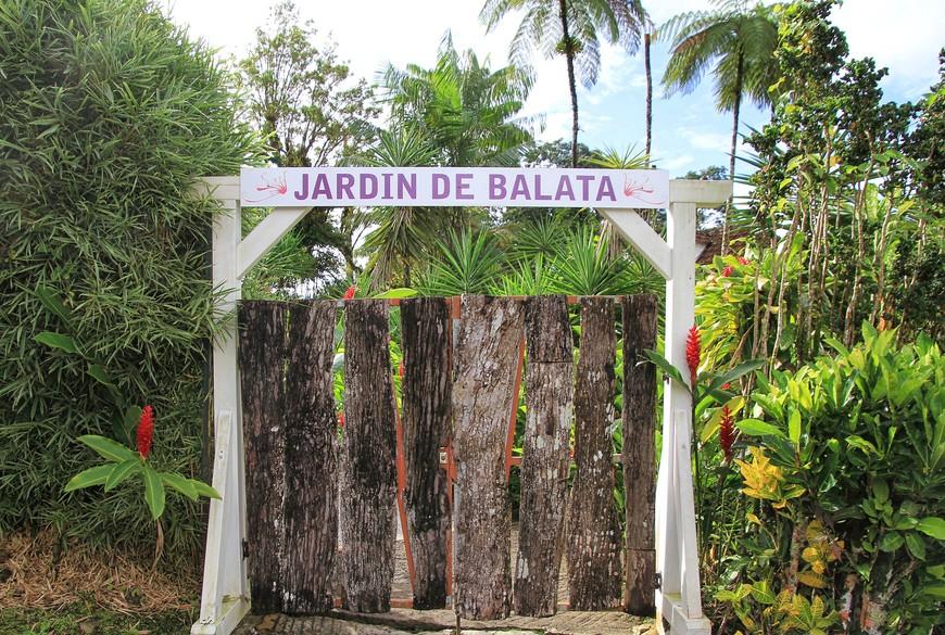 За совершенно непритязательными воротами спрятана невероятная красота Мартиники! Впрочем, не всю красоту удалось убрать под замок. Шустрые колибри развлекали нас, пока мы дожидались начала работы сада.