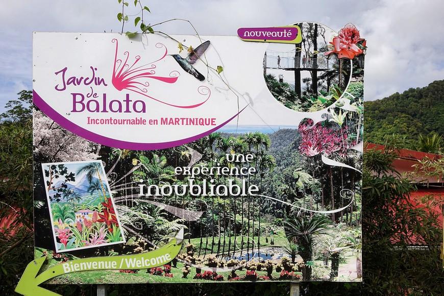 В саду, после покупки билетов, выдадут программку со схемой сада (совершенно излишней и так все понятно) и подробной инструкцией где что растет, на французском языке...