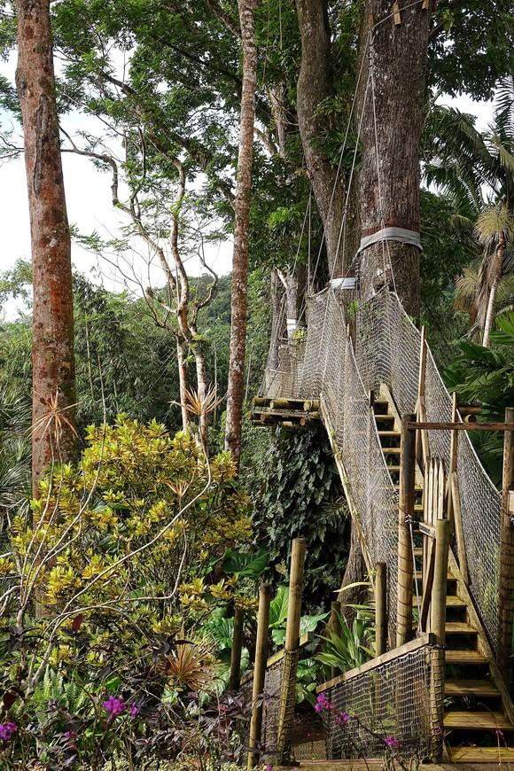 По мосткам погулять можно, если хочется полюбоваться видом сверху.