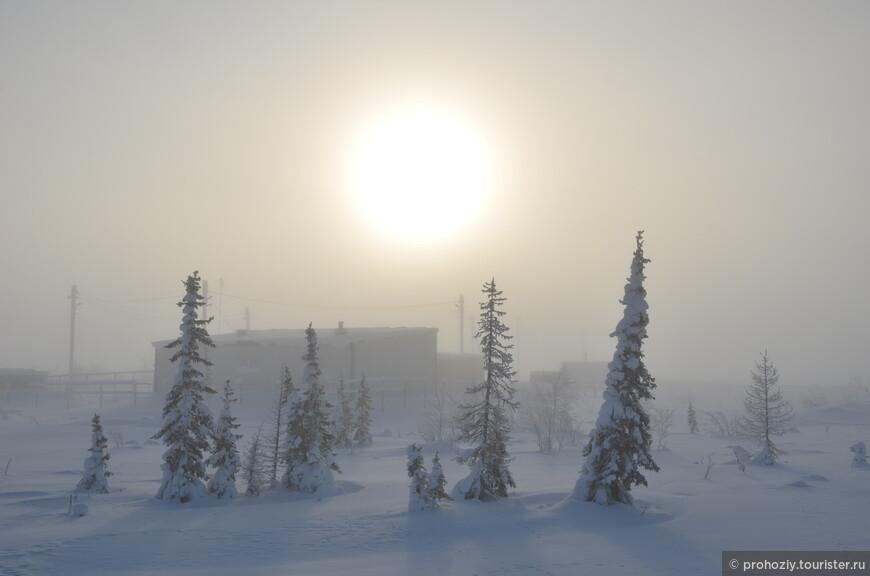 Туман. Солнце. Снег. Всё очень красиво!