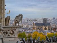 Каким видят Париж горгульи Нотер Дам.