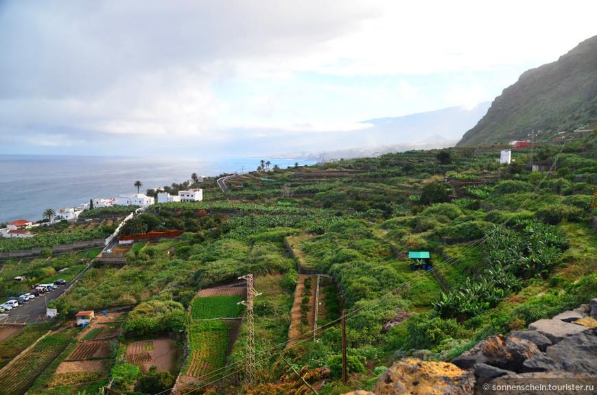 Иумрудным ковром на северных склонах Тейде вблизи Пуэрто-де ла Крус раскинулась долина Оротава.