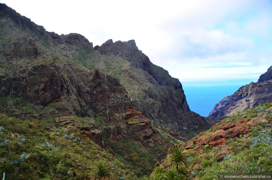 Ущелье Маска - одно из самых глубоких на Тенерифе. Его максимальная глубина около 1300 метров.