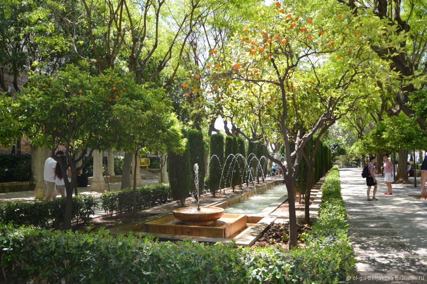 Сквер у дворца Альмудайна в Пальме.