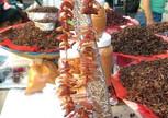 Кактусовые гусеницы на фоне жареных кузнечиков
