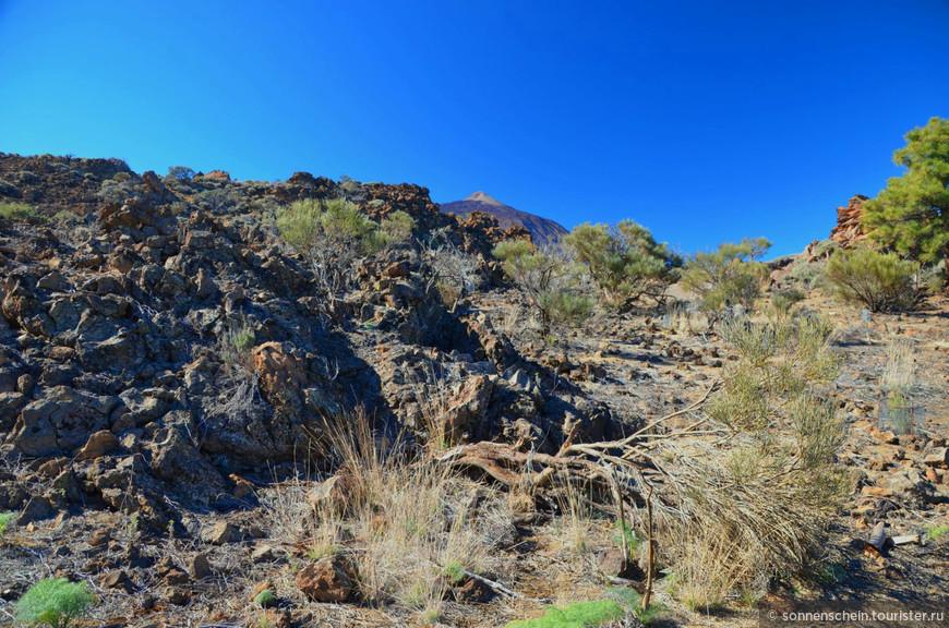 Кальдера Лас Каньядас вместе с вулканом Тейде имеет статус национального парка, т.е. особо охраняемой территории государственного значения. Всего в Испании 15 таких природных заповедников, и Parque Nacional del Teide — самый посещаемый из них (около 3 млн. туристов в год).