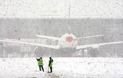 Более 80 рейсов в аэропортах Москвы отменили из-за непогоды