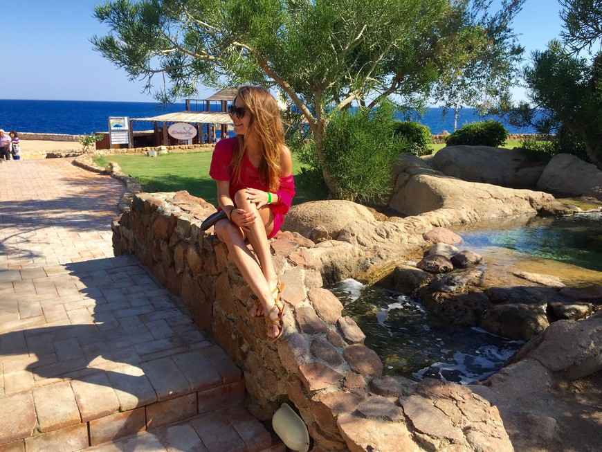Domina Coral Bay Oasis 2015 г.