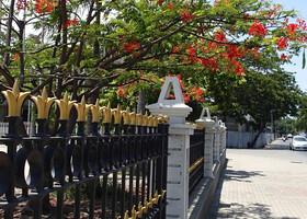 Восточный Тимор. Часть вторая. Открываем новую страну
