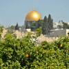 Весна в Иерусалиме