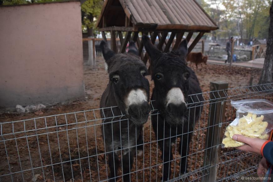 Миниатюры зданий нас не особо впечатлили, а вот животные в мини зоопарке понравились больше.