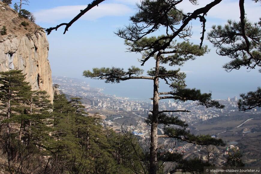 Скала Ставри-Кая. Высота 663 метра над уровнем моря.