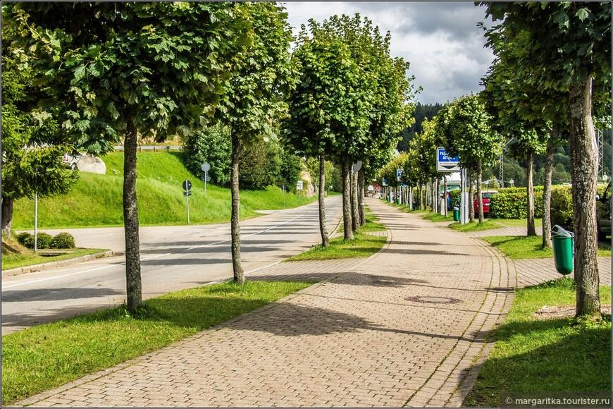 от центра города к озеру и жд-пешеходному мосту через залив ведёт зеленая аллея