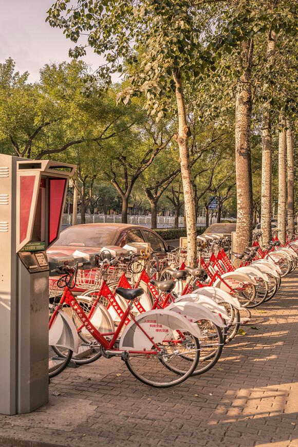 На прогулку можно отправиться и на велосипеде,прокат которого стоит копейки.