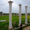 Античные памятники Кипра: Саламис