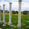 Античные памятники Кипра: руины Саламина