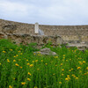 Русскоязычный гид на Кипре