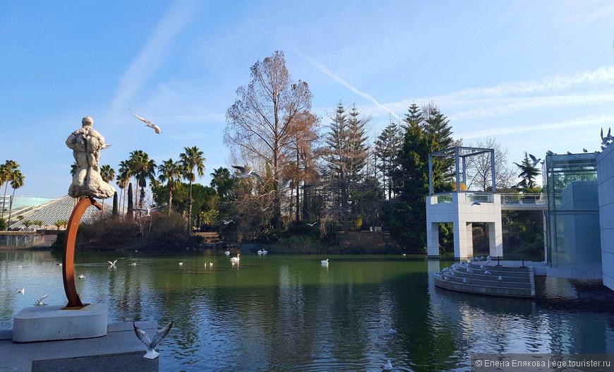 Сразу около входа в парк начинается парковое озеро с многочисленными обитателями: здесь есть белые пеликаны, карпы, дикие утки, уточки-мандаринки, черные и белые лебеди, гуси и другие птицы, а также пруд украшен скульптурами.