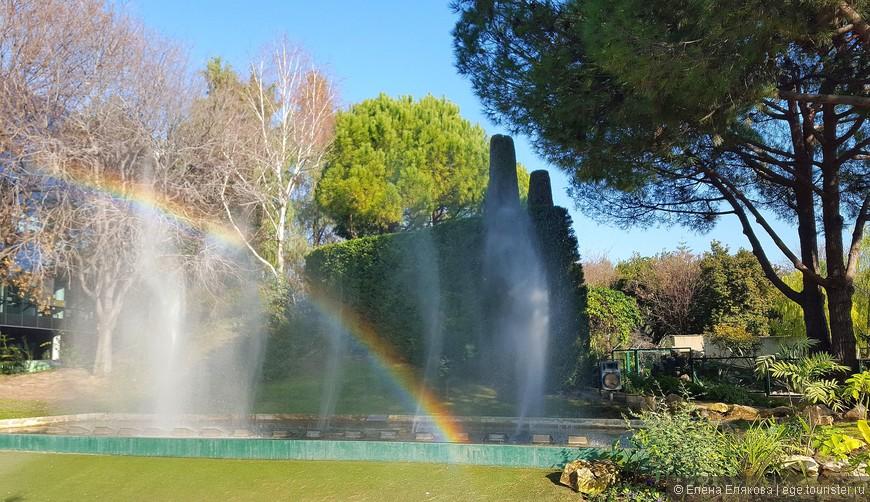 Каждый час в парке включается музыкальный фонтан, который «танцует» под известные классические произведения.