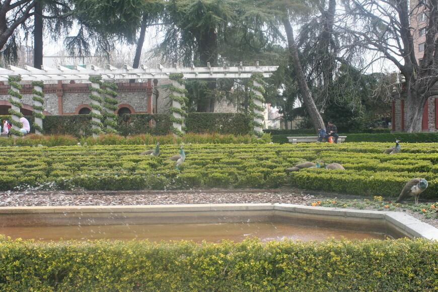 Парк Буэ́н-Рети́ро. Павильон с Павлинами