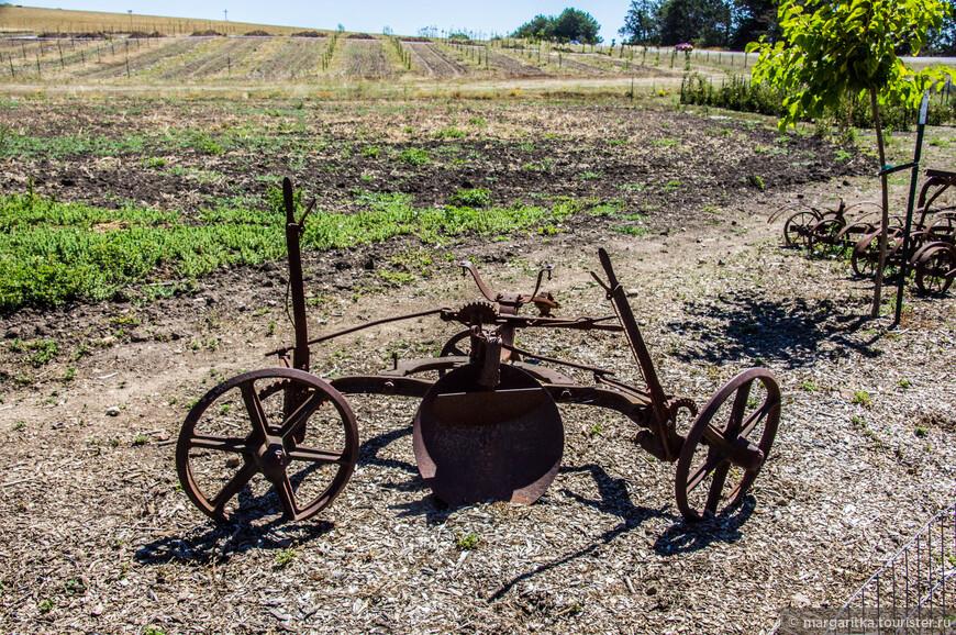 сельхоз утварь выставлена в определенном порядке для удобного осмотра посетителям