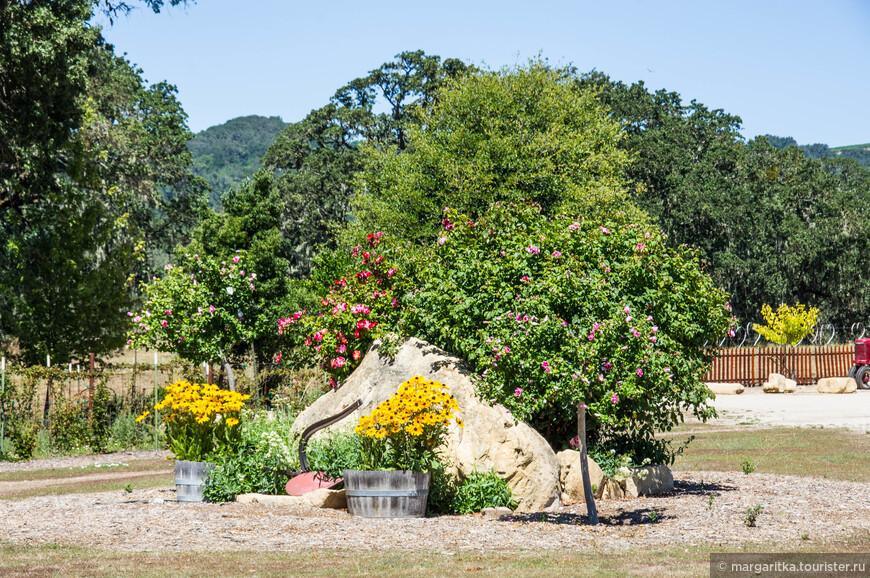 цветочные инсталяции вокруг естественных валунов, коих немало на территории