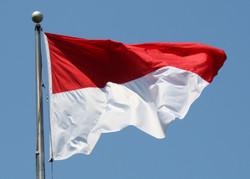Турист из РФ арестован за кражу национального флага в Индонезии