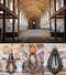 Замок Шантийи. Музей лошади