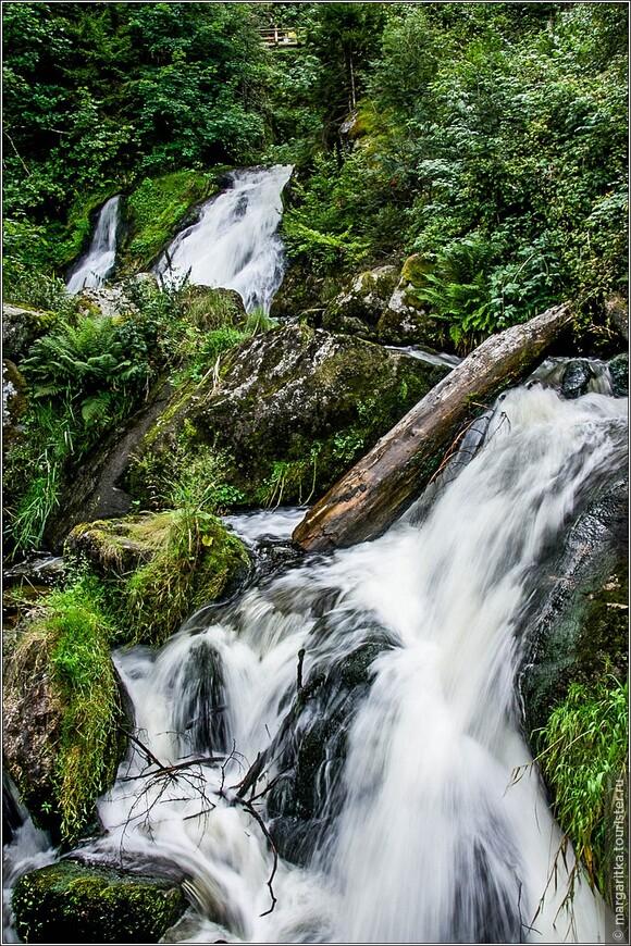массивные бревна, камни  и валуны влияют ня течение реки Гутах